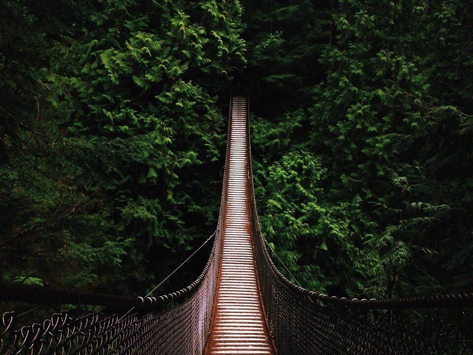 https://seekmediation.com/wp-content/uploads/2020/10/lynn-canyon-suspension-bridge-in-vancouver-b-c_t20_XWW1mR-960x720.jpg