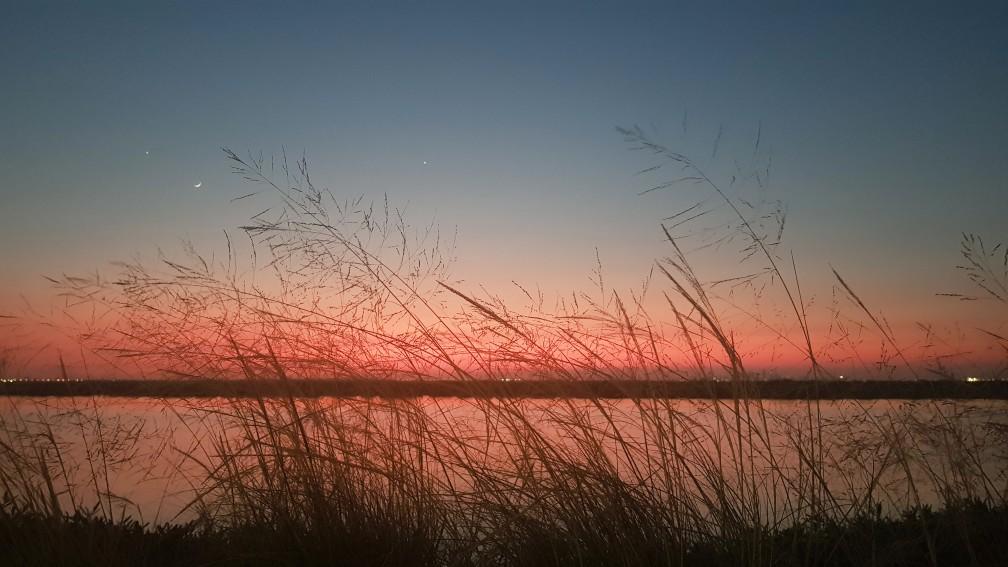 https://seekmediation.com/wp-content/uploads/2020/12/nature-grass-beauty-in-nature-sea-sunset-colorful-seaside-abu-dhabi-natural-light-natural-backgrounds_t20_b6vxRX.jpg